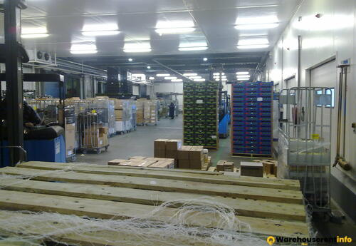 Warehouses to let in Depozit Frigorific Bucuresti S2